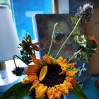 卧室中关于花瓶的风水 值得收藏